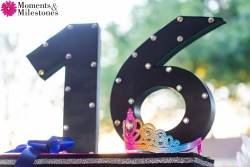 Samira Sweet 16 Celebrations at Granberry Hills Event Center