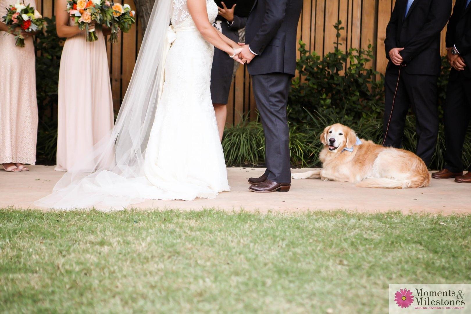 Wedding Romance at The Hyatt Hill Country