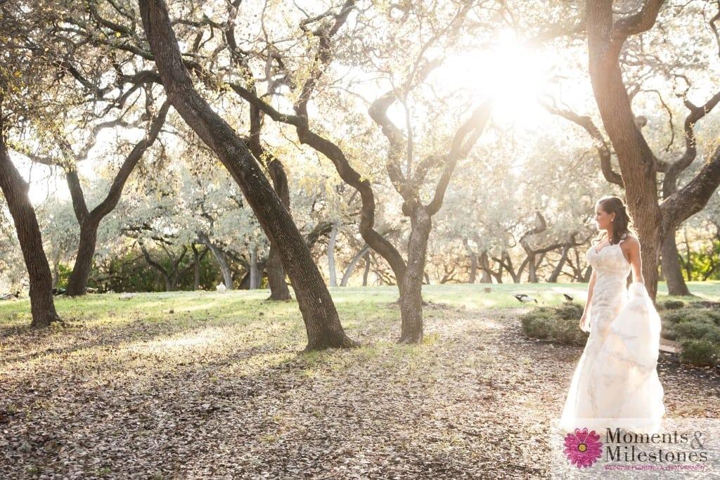 Elegant Rustic Outdoor Bridal (6)