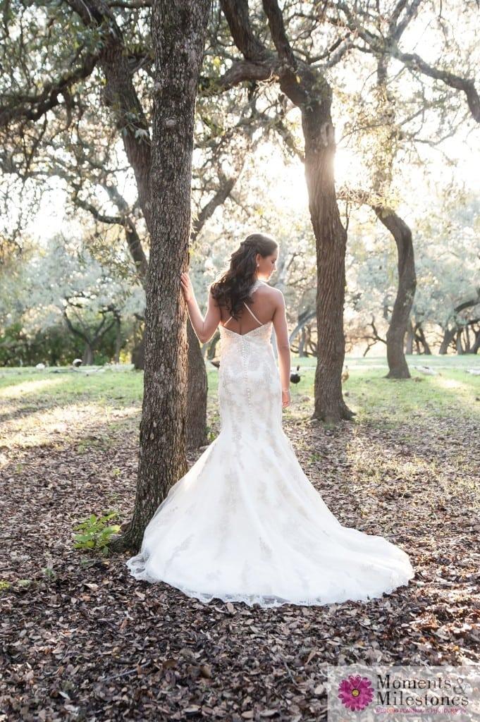 Elegant Rustic Outdoor Bridal (7)