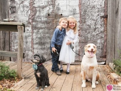 Play Time With the Click Family Photography in Gruene, Texas