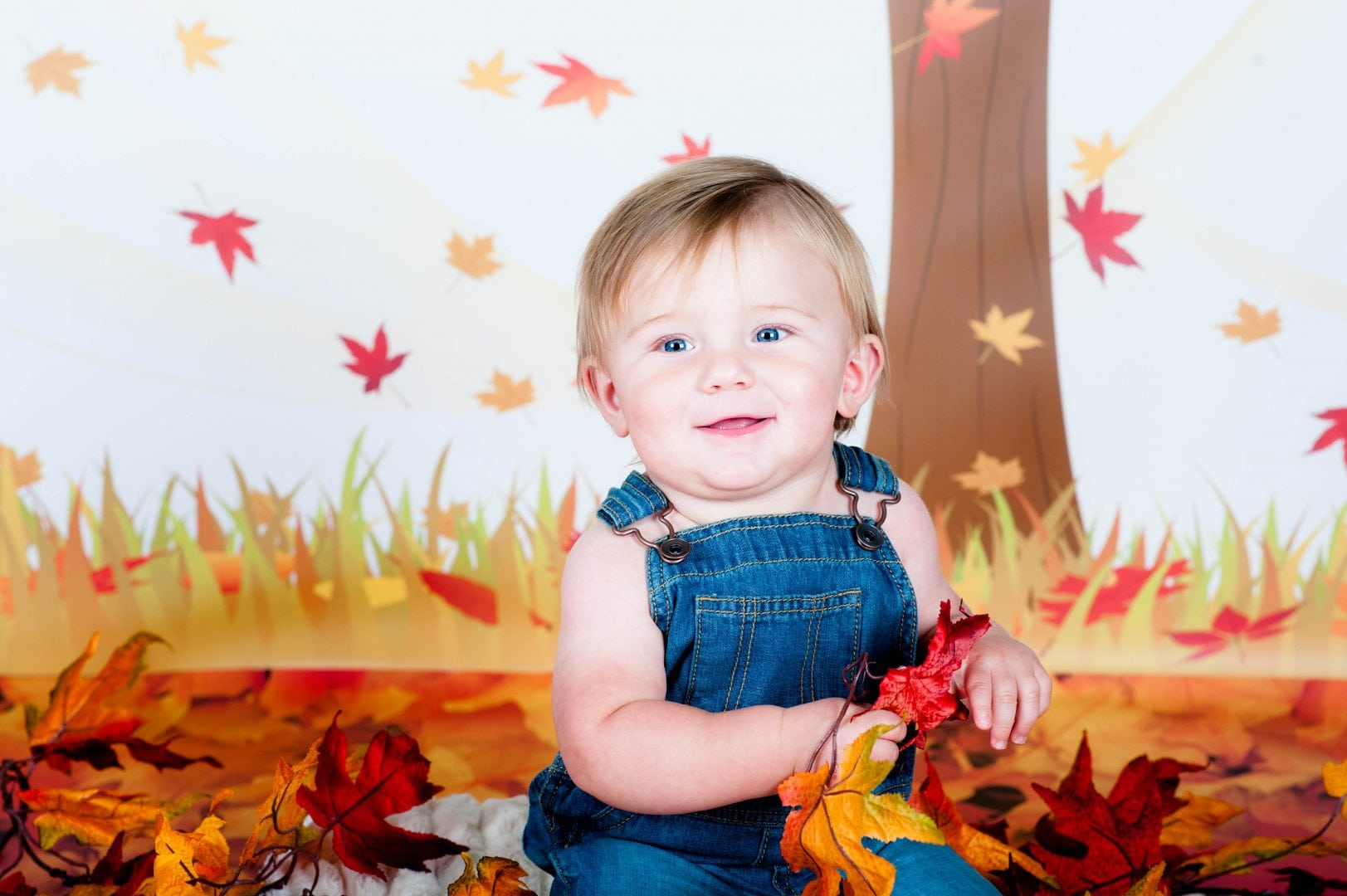 Monthly Minis, Mini Sessions, Themed Sessions, Affordable