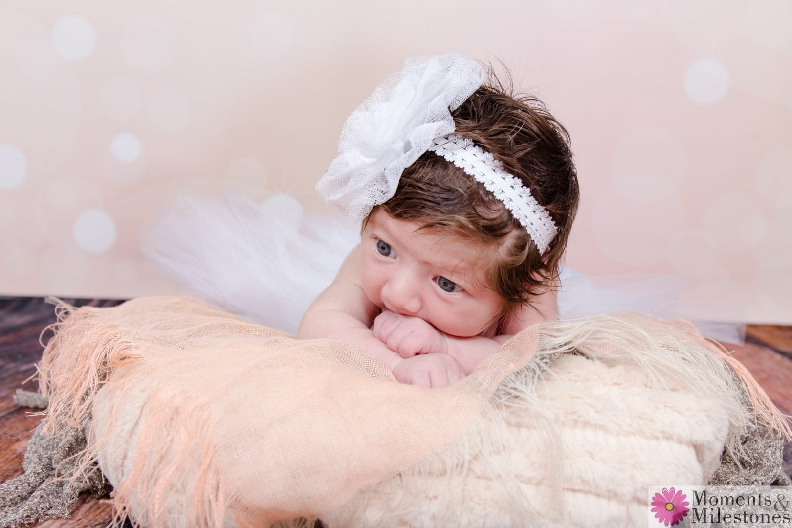 Newborn Session in the M&M Studio!!